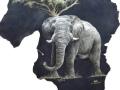 Elephant-full