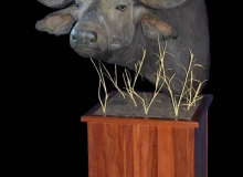 Buffalo pedestal mount on square base