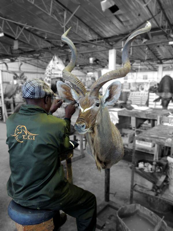 kudu and worker