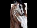 springbok toile
